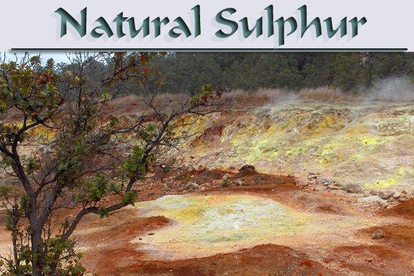 MSM - Natural Sulphur Supplement