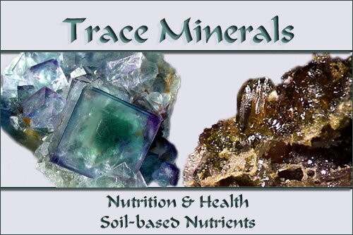 Trace minerals nutrition and health soil based nutrients for Mineral soil vs organic soil