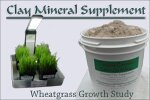 Wheatgrass Clay Colloid Supplement Study